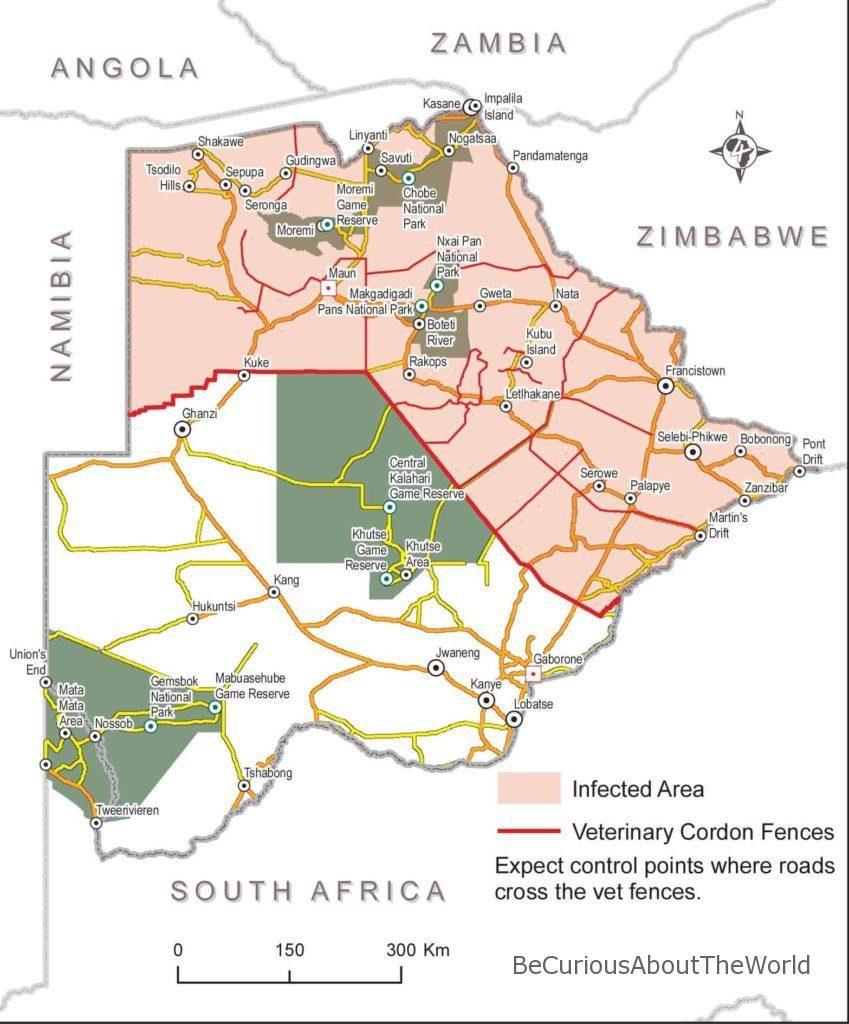 BeCuriousAboutTheWorld - Siatki weterynaryjne w Namibii i Botswanie