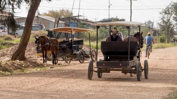 BeCuriousAboutTheWorld - Mennonites
