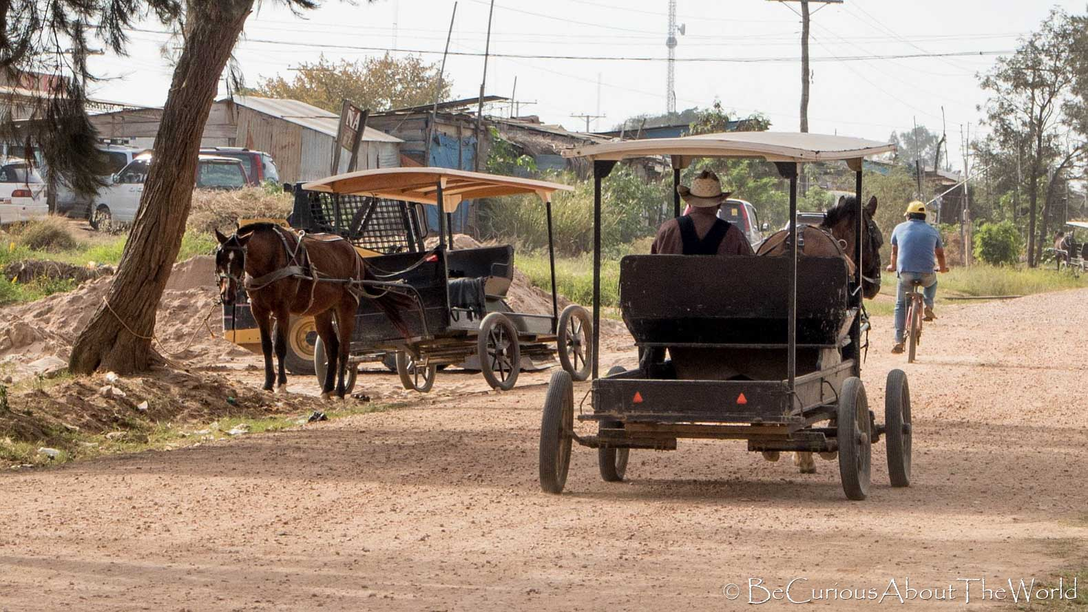 BeCuriousAboutTheWorld - Mennonites